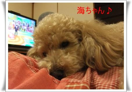 2011_0518_195438-DSCF4152.jpg