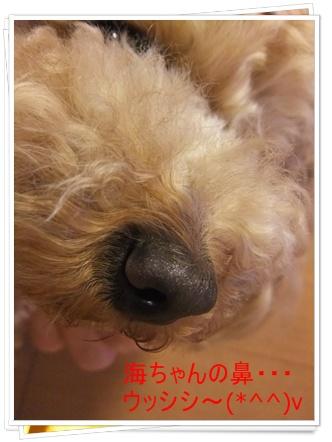 2011_0518_203508-DSCF4180.jpg