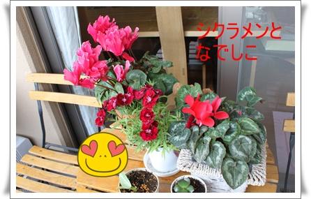 2011_0520_125126-IMG_2322.jpg