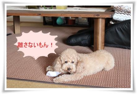 2011_0525_075912-IMG_2334.jpg