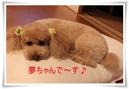 2011_0526_211141-IMG_2364.jpg
