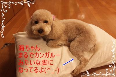 2011_0526_211809-IMG_2390.jpg