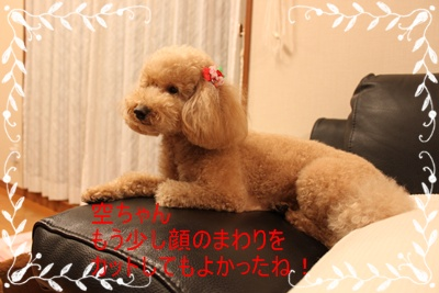 2011_0526_211818-IMG_2391.jpg
