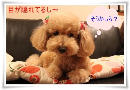 2011_0526_211927-IMG_2394.jpg