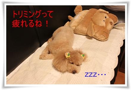 2011_0526_222121-IMG_2399.jpg