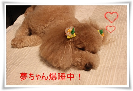 2011_0526_222134-IMG_2401.jpg