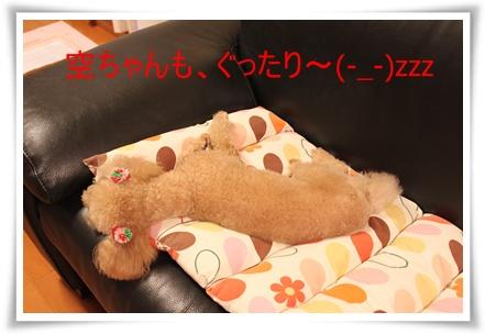 2011_0526_222139-IMG_2402.jpg