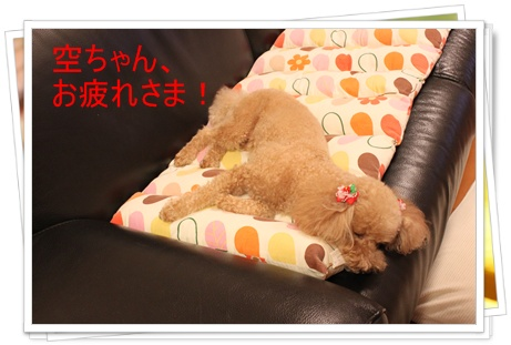 2011_0526_222147-IMG_2403.jpg