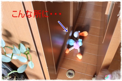 2011_0527_130033-IMG_2418.jpg