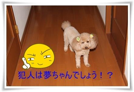 2011_0527_130051-IMG_2420.jpg