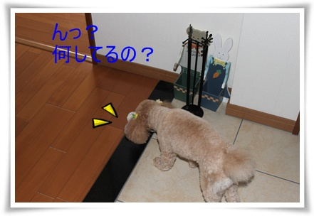 2011_0527_130123-IMG_2421.jpg