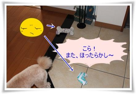 2011_0527_130126-IMG_2422.jpg