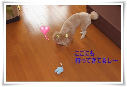 2011_0527_130144-IMG_2423.jpg