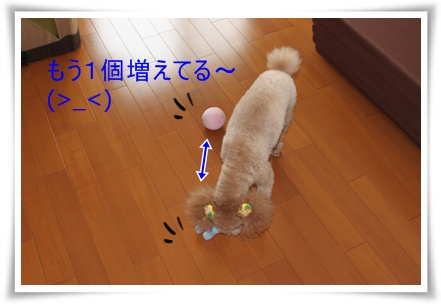 2011_0527_130146-IMG_2424.jpg