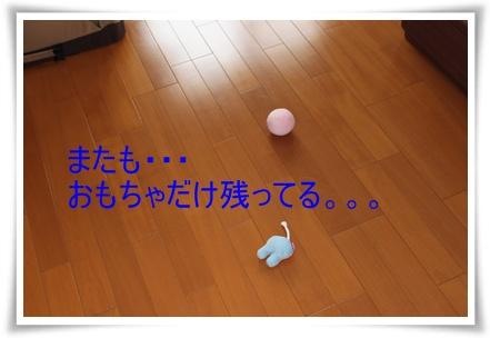 2011_0527_130150-IMG_2425.jpg