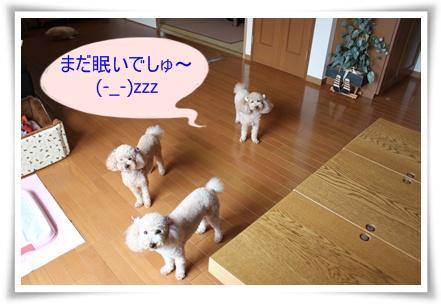 2011_0531_130005-IMG_2443.jpg