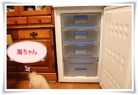 2011_0601_201008-IMG_2455.jpg