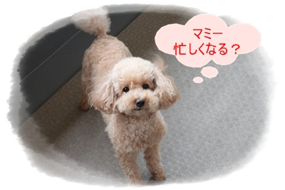 2011_0608_174712-IMG_2573.jpg