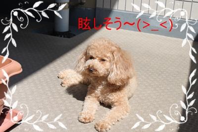 2011_0628_152038-IMG_2642.jpg