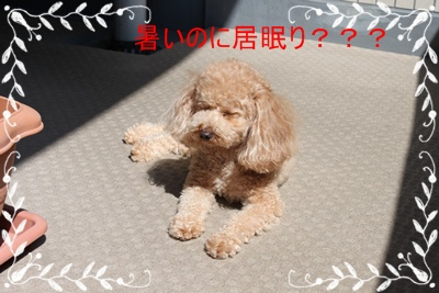 2011_0628_152041-IMG_2644.jpg