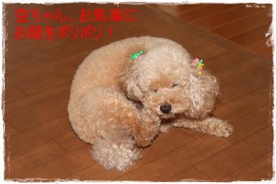 2011_0704_130407-IMG_2746.jpg