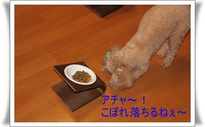 2011_0706_182914-IMG_2781.jpg