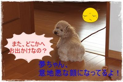 2011_0711_180819-IMG_2825.jpg