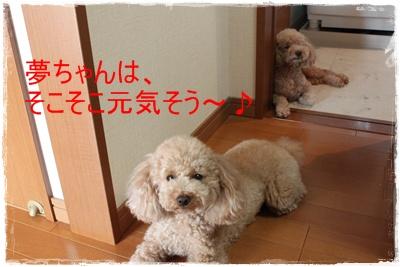 2011_0713_080722-IMG_2839.jpg