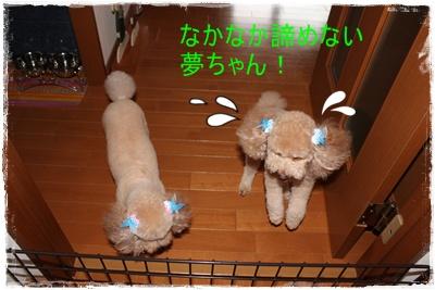 2011_0721_130023-IMG_2968.jpg