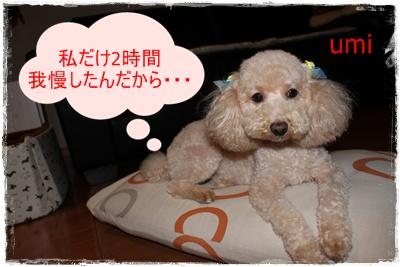 2011_0721_214118-IMG_2978.jpg
