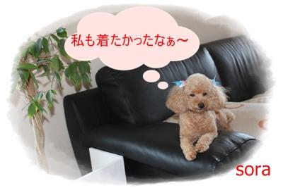2011_0722_145443-IMG_3025.jpg