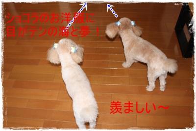 2011_0722_145501-IMG_3026.jpg