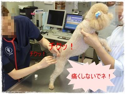 2011_0723_112004-DSCF4462.jpg