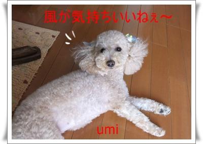 2011_0723_150010-DSCF4471.jpg