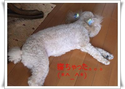 2011_0723_150023-DSCF4472.jpg