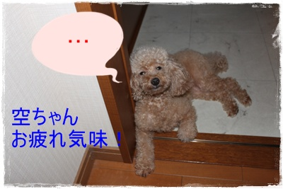 2011_0901_222556-IMG_3909.jpg