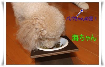 2011_0904_171817-IMG_3919.jpg