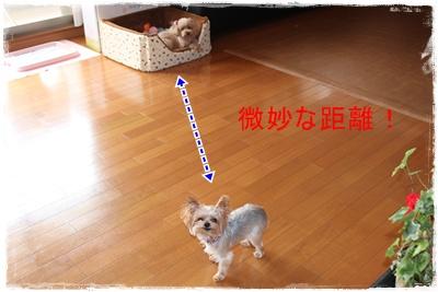 2011_0912_111843-IMG_4007.jpg