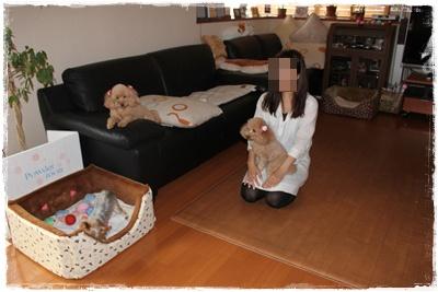2011_0912_115100-IMG_4010.jpg