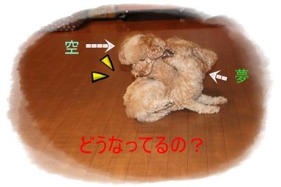 2011_0920_092737-IMG_4065.jpg