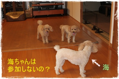 2011_0920_092744-IMG_4066.jpg