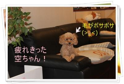 2011_0920_092903-IMG_4068.jpg