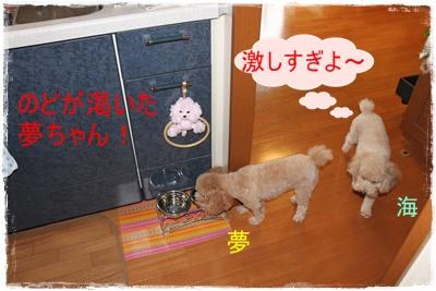 2011_0920_092920-IMG_4069.jpg