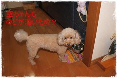 2011_0920_093007-IMG_4070.jpg