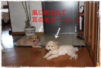 2011_0922_100705-IMG_4081.jpg