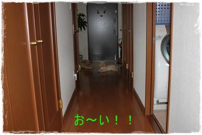 2011_0922_100718-IMG_4083.jpg