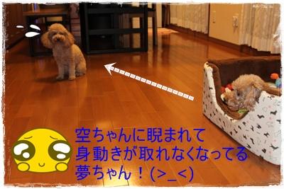 2011_1004_201955-IMG_4263.jpg