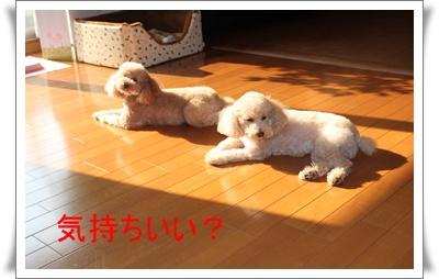 2011_1007_085920-IMG_4291.jpg