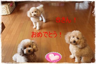 2011_1015_075708-IMG_4427.jpg