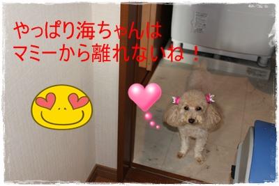 2011_1102_081249-IMG_4767.jpg